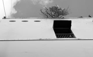 CRR_1617_008_convento_tree_roof
